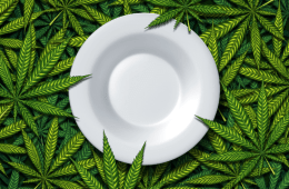 Foods that alter the effects of cannabis