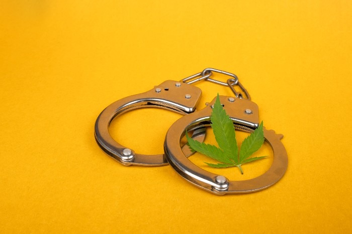 cannabis decriminalized New Orleans