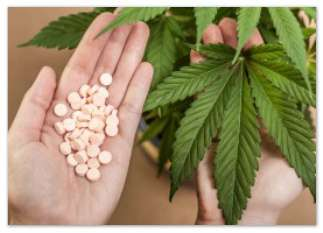 Cannabis vs Big Pharma