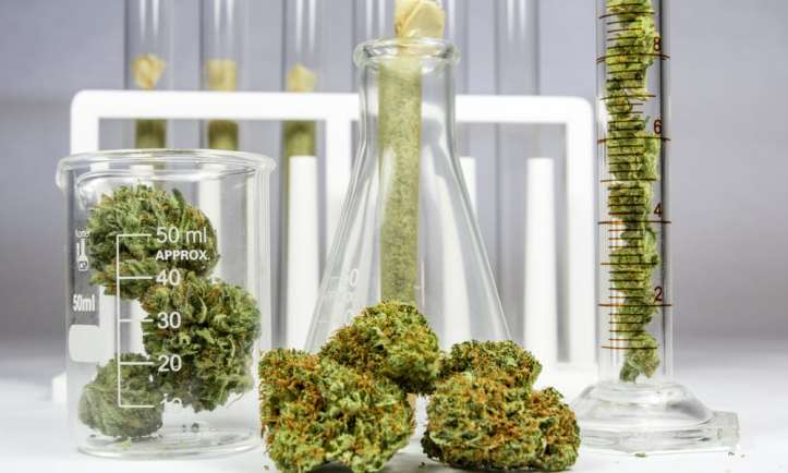 most-advanced-countries-for-marijuana-research-hero