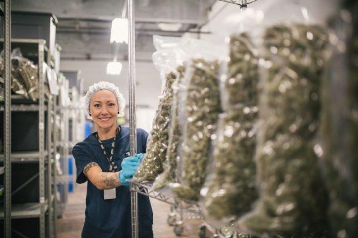 lady weed.jpg