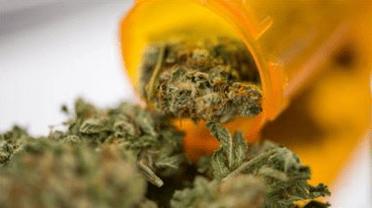 medical weed 1
