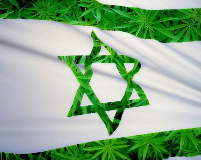 ISRAEL   Will medical cannabis exports be a cash cow for Israel