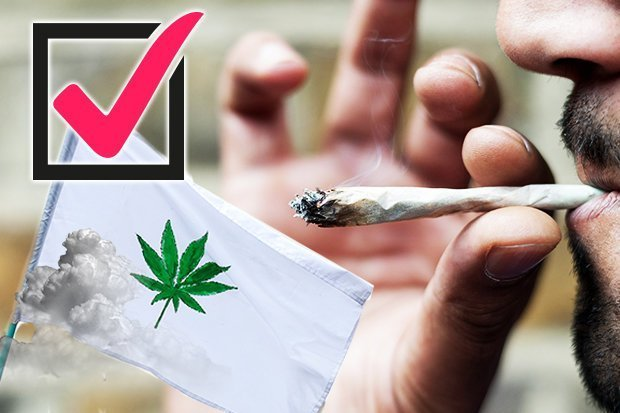 cannabis-people-s-vote-767500