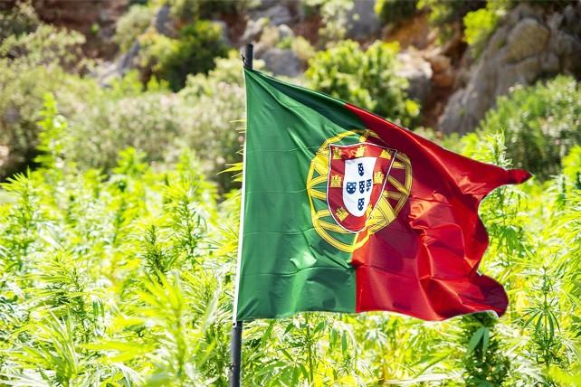 portugal-marijuana-cannabis-legalisation