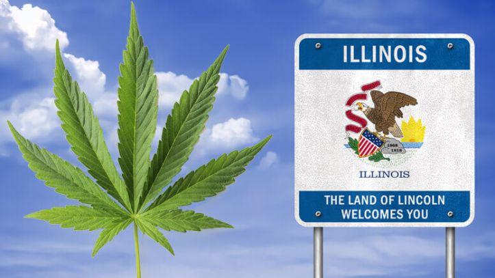 IllinoisWeed2