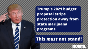 Tell Congress Not To Allow Trump To Roll Back Medical Marijuana Protections