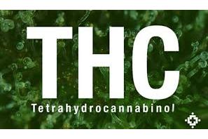 What is Tetrahydrocannabinol?