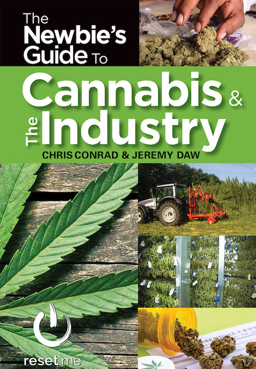 Cannabis Books Newbies Guide to the Cannabis Industry Cannabis Now