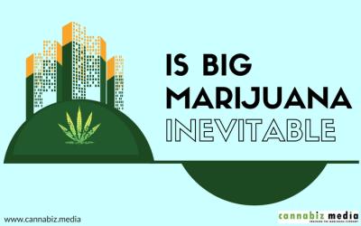 Is Big Marijuana Inevitable?