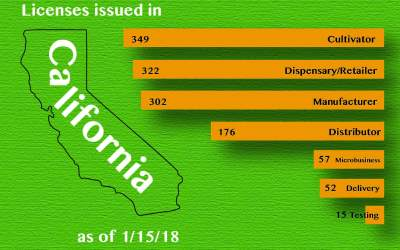 Learnings From California's First 1,000 Licenses