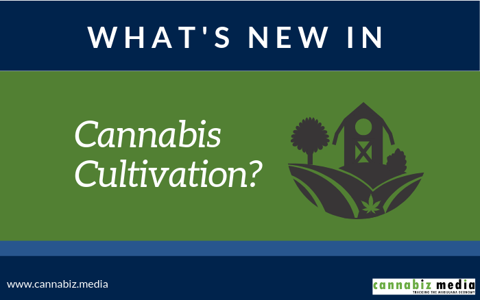 What's New in Cannabis Cultivation?