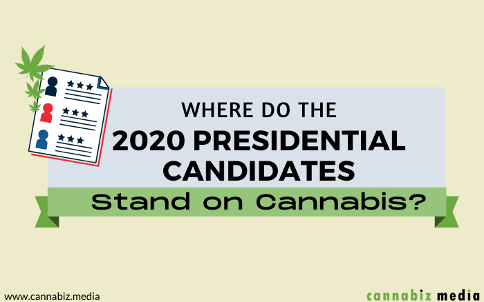 Where Do 2020 Presidential Candidates Stand on Cannabis?