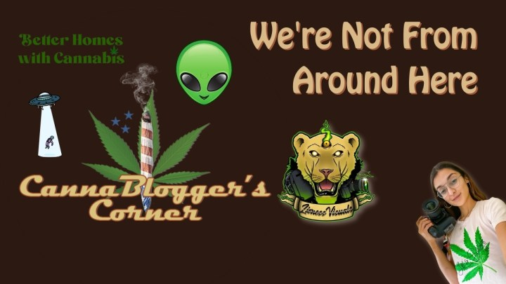 CannaBlogger's Corner: We're Not From Around Here