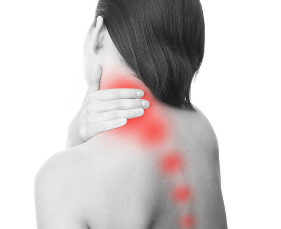 reduce pain and inflammation with Cannabody