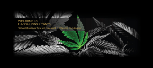 canna consultants banner