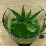 Cannabis Infusions