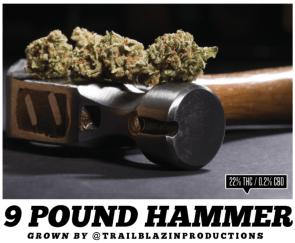 9lb hammer
