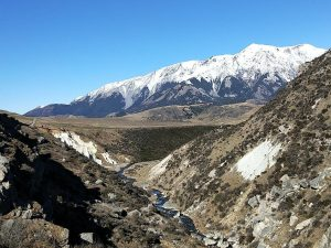 Tranz Alpine Tour