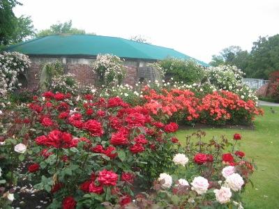 Christchurch City Tour Mona Vale Roses
