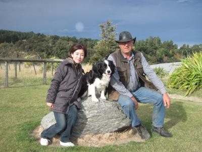 Christchurch Farm tour sheepdog photo