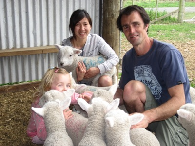 Christchurch Farm Tour with baby lambs