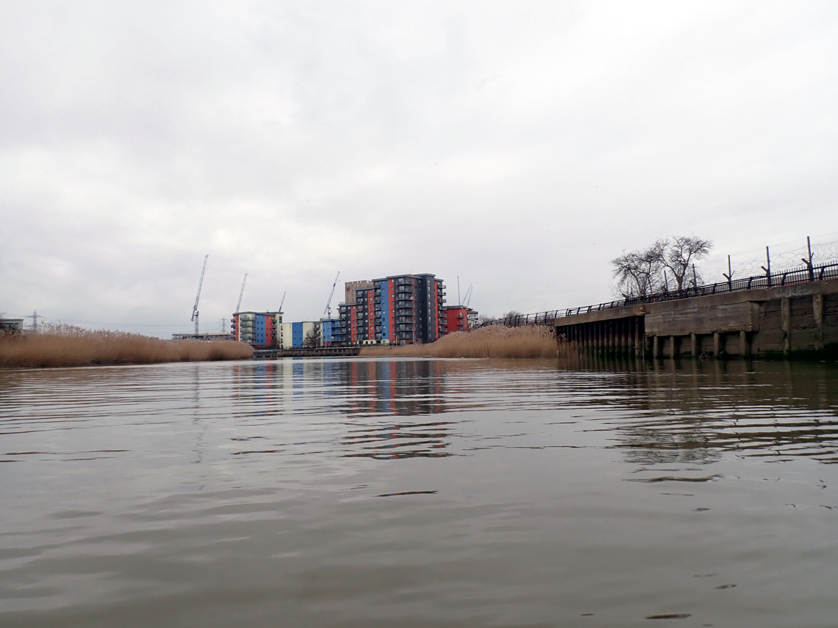 Residential apartments begin to appear as you head up Barking Creek