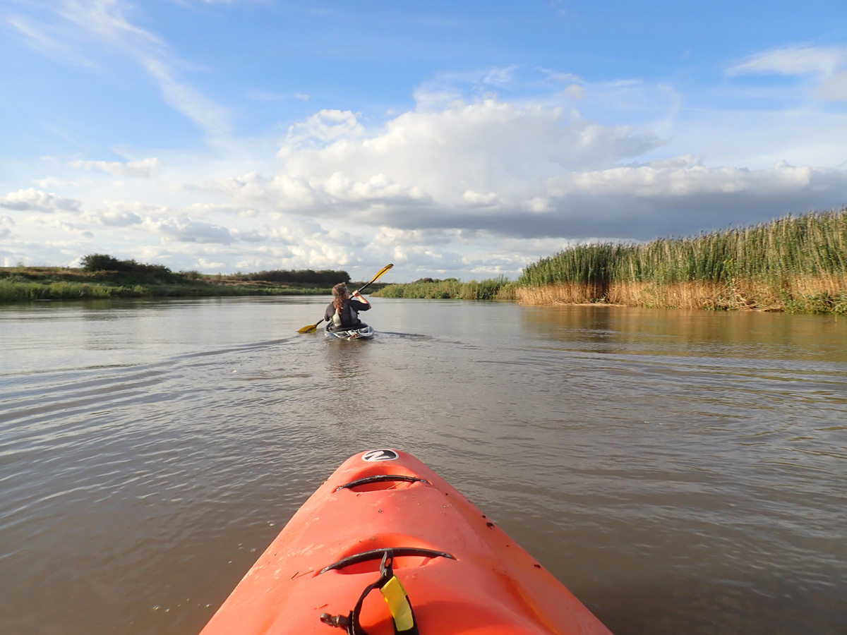 Kayaking along the River Darent to the Thames