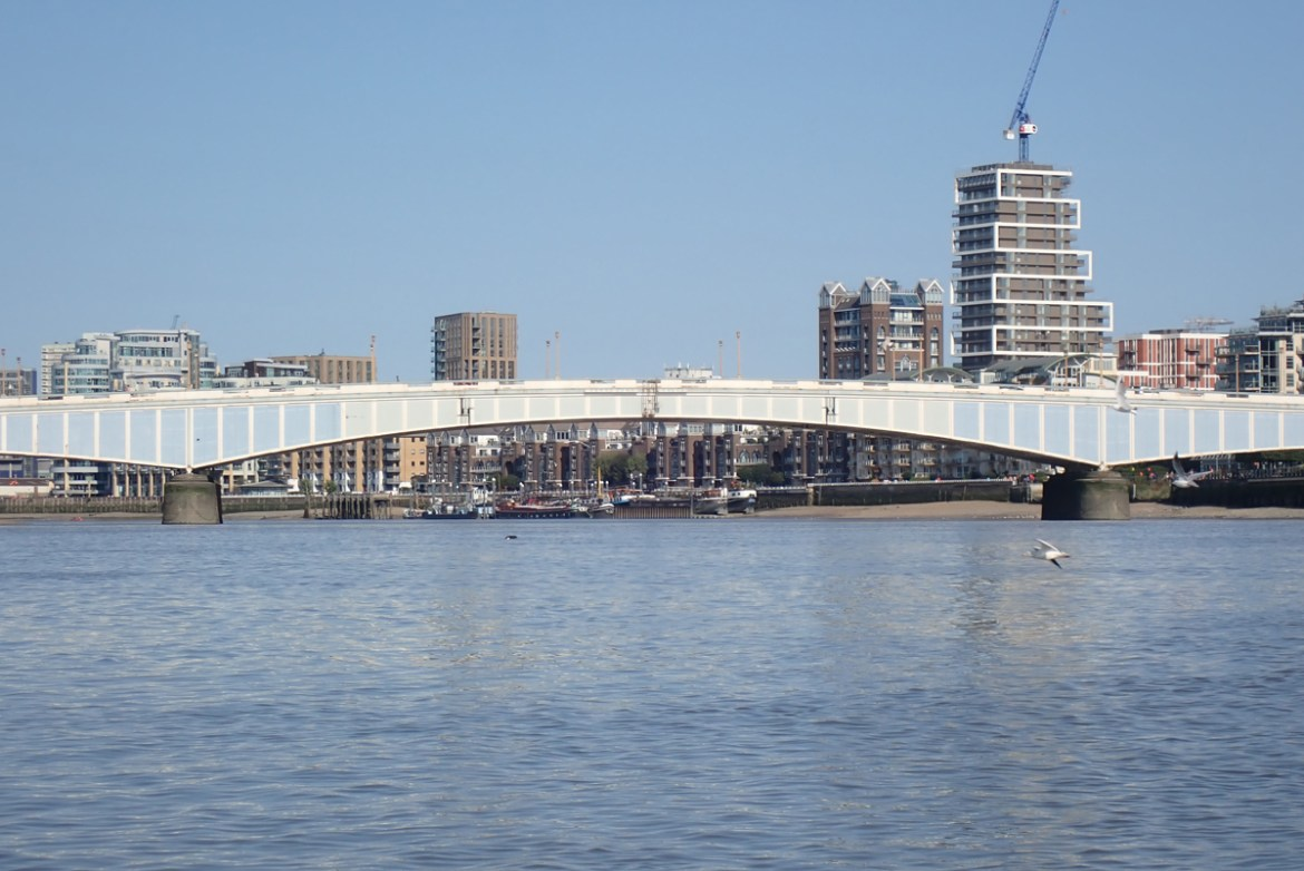A seal's dark head appears above the water, in the middle of the Thames, with Wandsworth Bridge behind it
