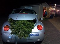 Balsam Fir Christmas Tree loaded and ready to go!