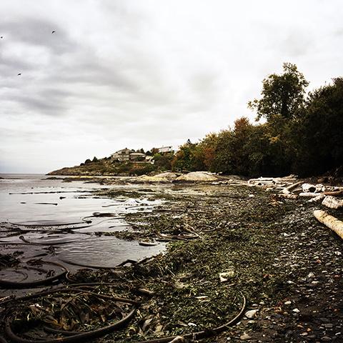 嵐の後の海岸