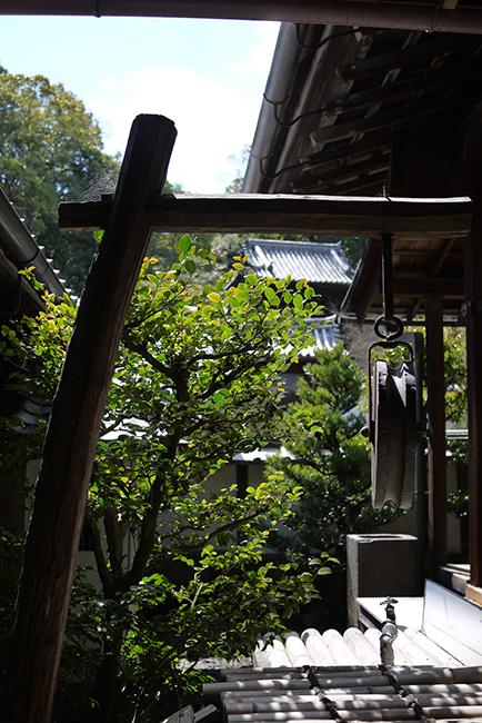 ikkyu-ji5