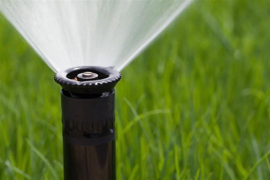DWP Watering Rules Update