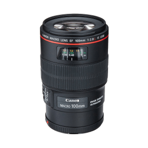 best Canon T7i lens for multipurpose and macro photography