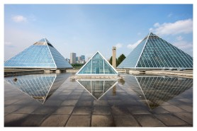 The Muttart Conservatory pyramids looking towards town