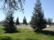 outdoor arena 2