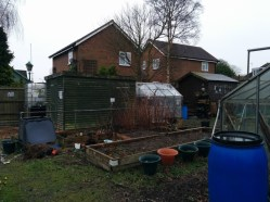 park-farm-allotments-014