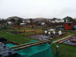 park-farm-allotments-018