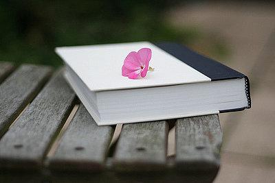Esqueça um livro