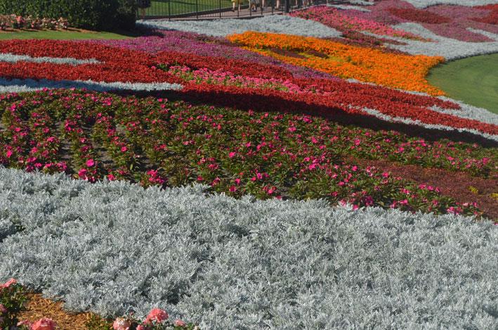 Epcot-Flower-and-Garden-Festival-parque2