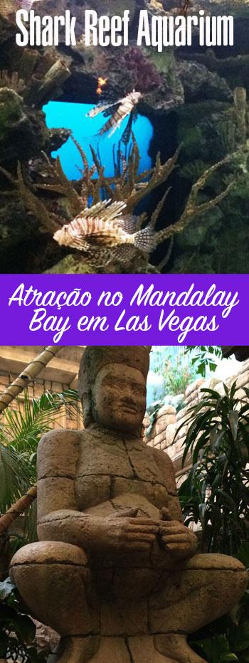 Shark Reef Aquarium no Mandalay Bay em Las Vegas