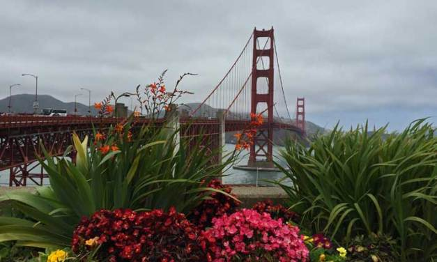 San Francisco: Como é o passeio pela Golden Gate.