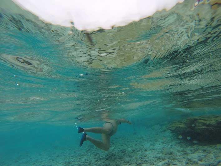 Mergulho no Acuario