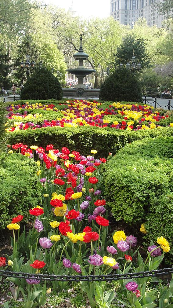 como e new york na primavera 10