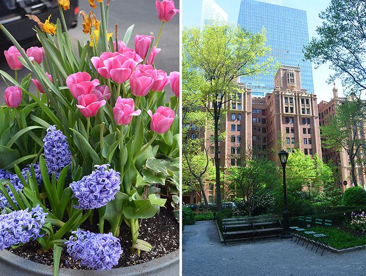 como e new york na primavera 11
