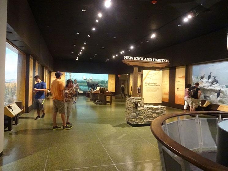 museu-de-ciencia-em-boston-22