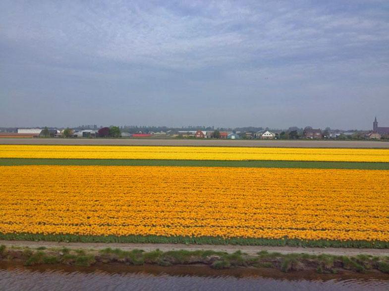 Viajando de trem pela Holanda