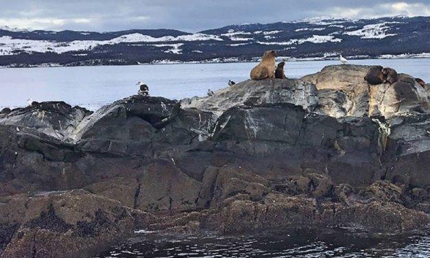 Ushuaia – roteiro de 3 dias na Terra do Fogo
