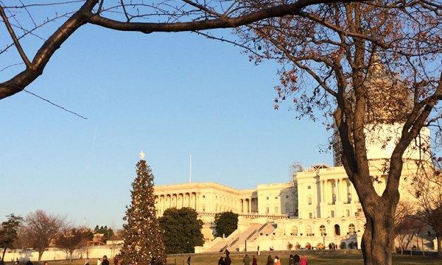 Viagem a Washington DC com filhos