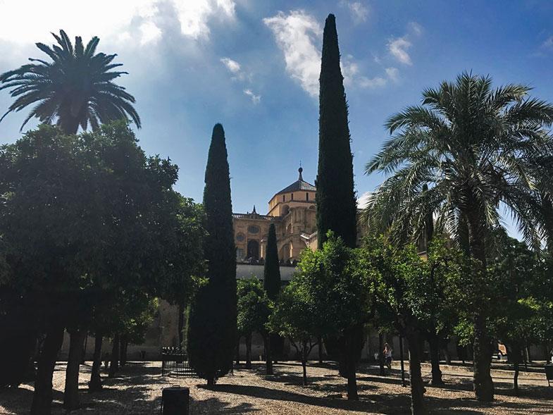 Pátio das Laranjas na Mesquita de Córdoba